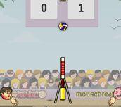 Sports H. Volejbal